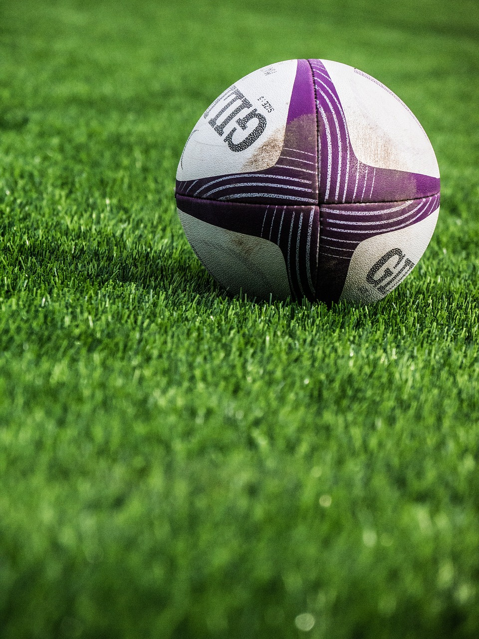National Rugby League Clinic
