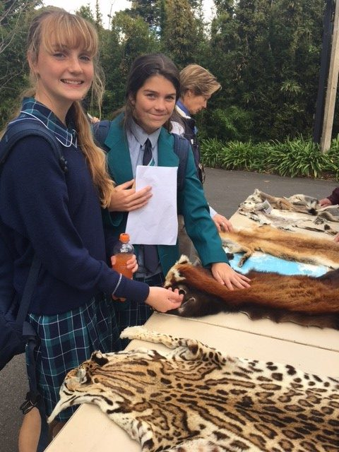 Year 9 Zoo Investigation