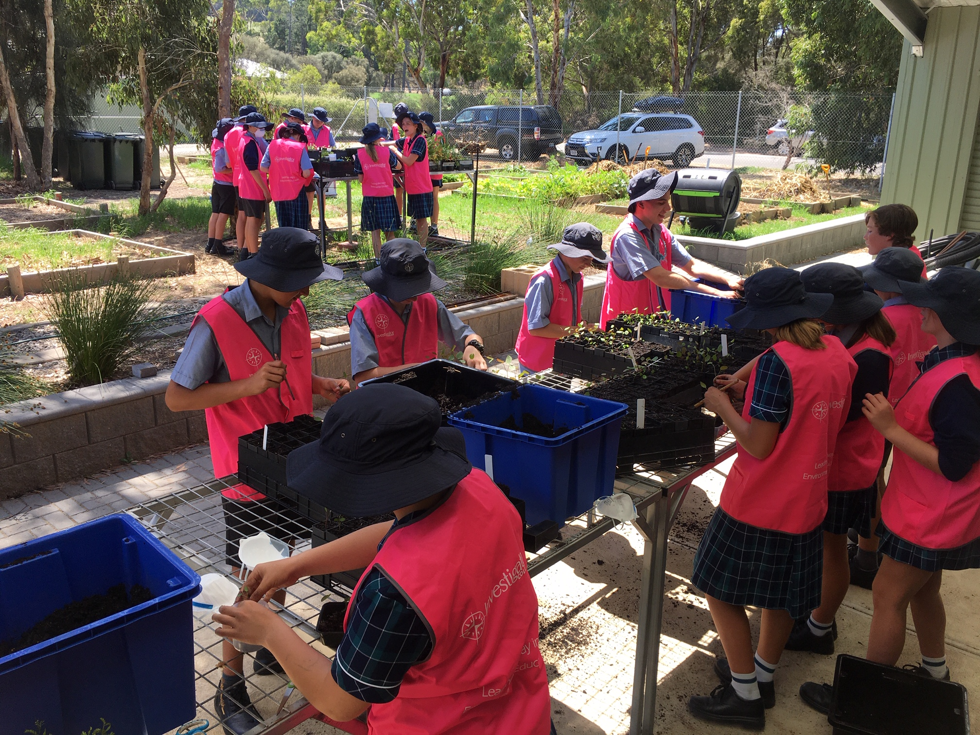 Year 9 CALM Native Plant Propagation | 2020