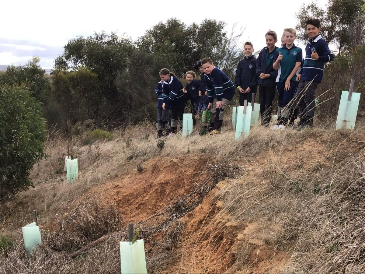 Year 4 Weather and Erosion Excursion | 2021